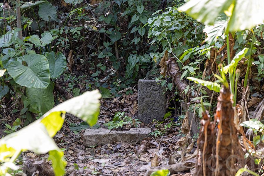 在歷史文獻中記載的馬灣「九龍關」小界碑,在已荒廢的馬灣大街村曝光。(陳仲明/大紀元)