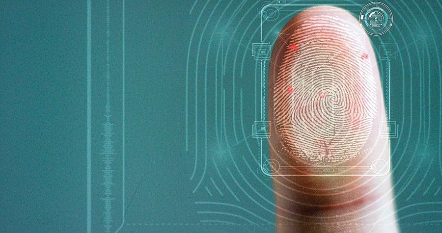 發現指紋對觸覺起關鍵作用