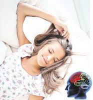 睡眠使大腦「重新開機」