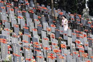 武漢清明祭掃 當局刻意低調