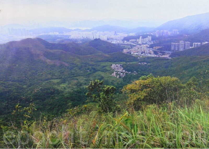 圖為香港北區鄉郊,攝於2019年5月。(宋碧龍/大紀元)