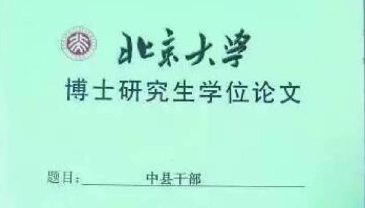 北大博士論文揭中共基層政權14大亂象