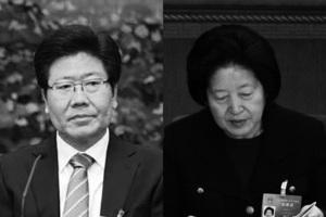 中共兩政治局委員下屆「入常」無望