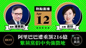 【珍言真語】潘東凱:阿里巴巴遭重罰216億  紫荊黨倡中央強徵地