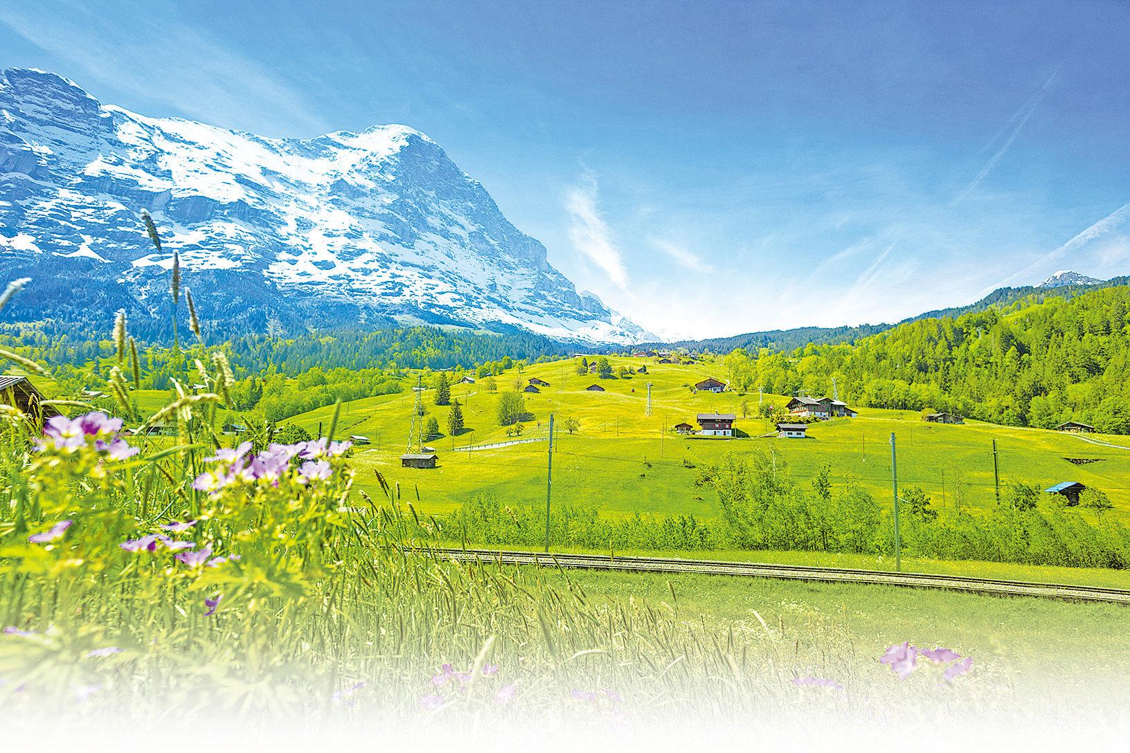 阿爾卑斯山冰川正在快速消失。(Fotolia)