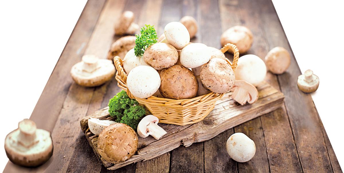 蘑菇鮮味多汁,非常美味!