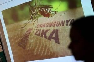 寨卡病多國蔓延 世衛警告當務之急遏制疫情
