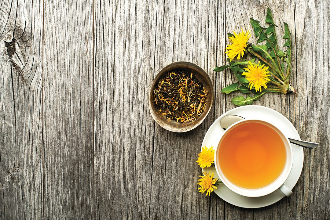 夏季時,蒲公英可用來泡茶。