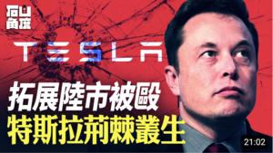 【有冇搞錯】拓展陸市被毆 Tesla荊棘叢生