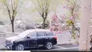 江蘇14級狂風 飛沙走石 北京河北罕降大雪