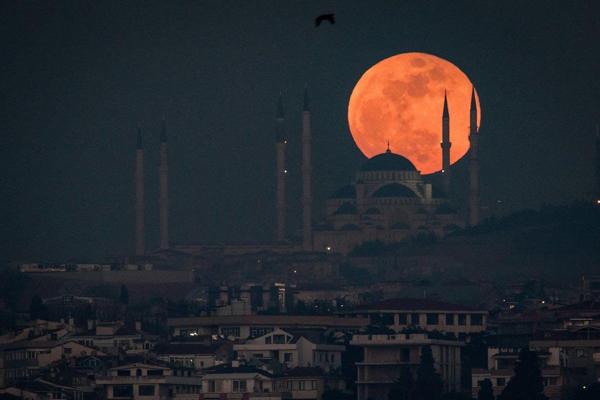 早在3月份印度神童阿南德(Abhigya Anand)就曾警示5月26日非同尋常,這次將出現今年最大的「血月」(Blood Moon)。圖為2018年1月31日在土耳其伊斯坦布爾的Camlica清真寺後面升起的超級血月亮。(Chris McGrath/Getty Images)