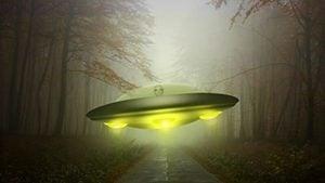 三十厘米高的外星人走上街道 嚇壞目擊者(影片)