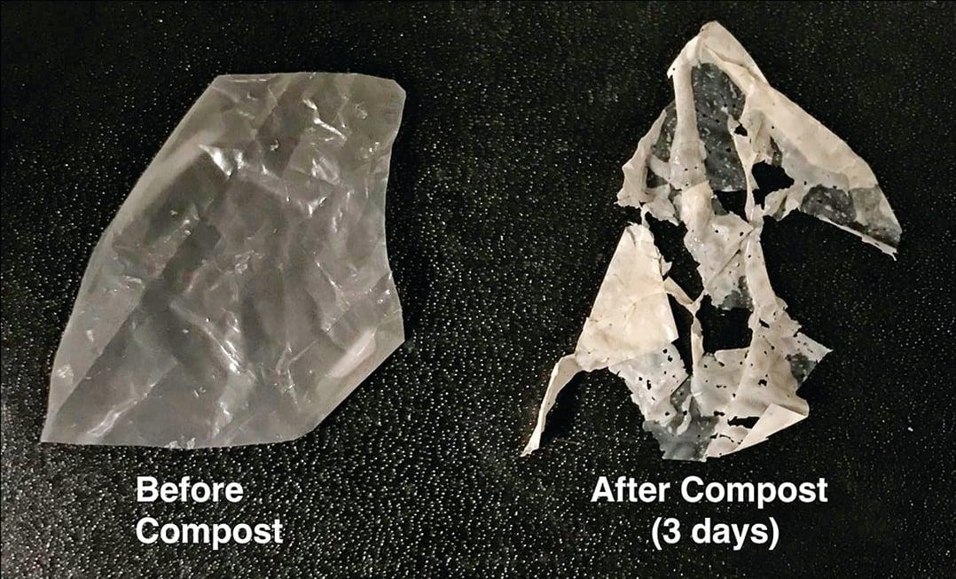 新發明的塑料在三天內即可自行分解。(Christopher DelRe, UCBerkeley)