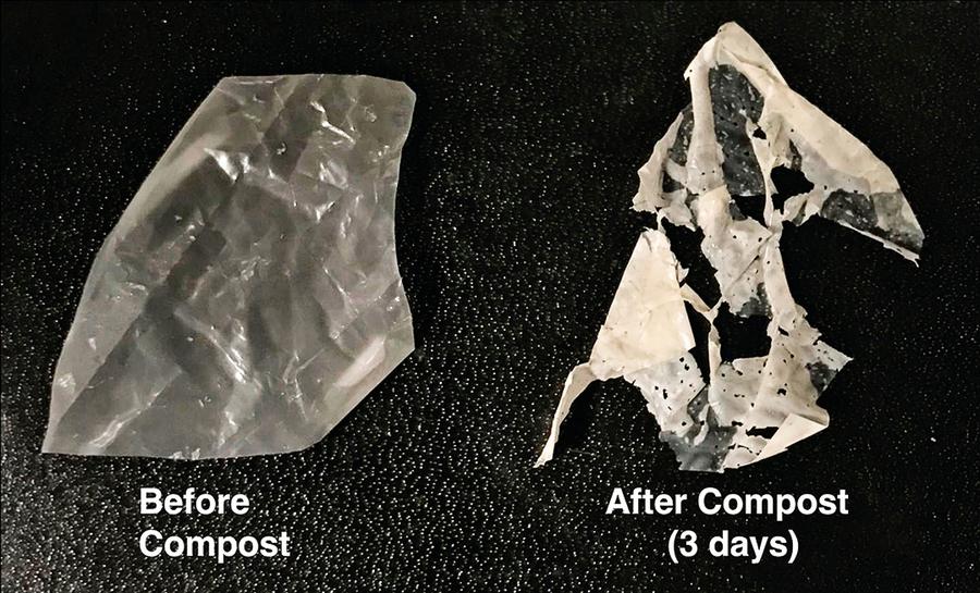 新型塑料問世 溫水浸泡降解成肥料