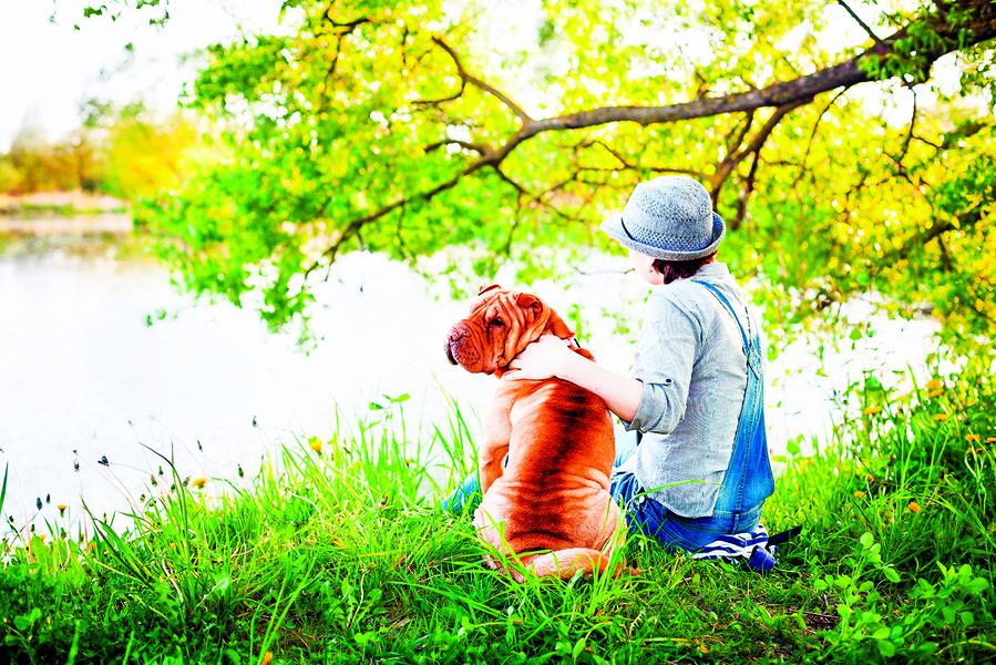 【浮生行吟】夢湖之春