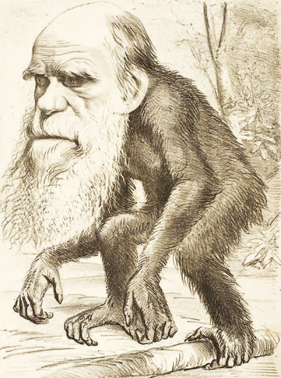 諷刺漫畫反映了1870年代基督徒對於「人類與猿類具有共同祖先」這個觀念的反對。(公有領域)