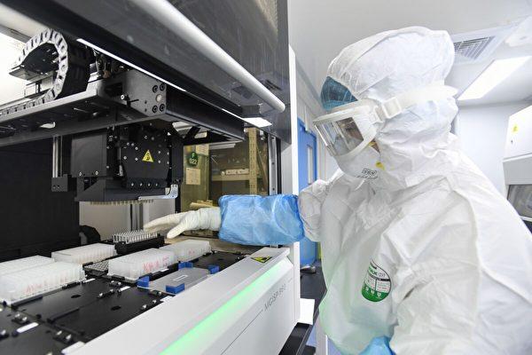 美國會情報委員會官員紐尼斯首次公開說,COVID-19(中共病毒)來自武漢實驗室且與生物戰掛勾。一份文件曝光中共如何將SARS冠狀病毒生化武器化。圖為實驗室技術人員在檢測人體樣本中的新型冠狀病毒。(STR/AFP via Getty Images)
