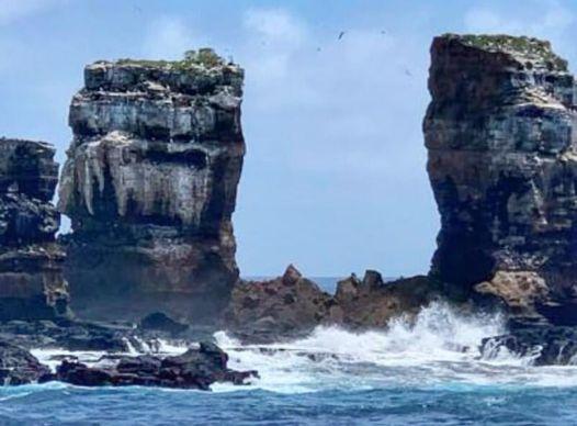 達爾文拱門坍塌 龜島物種被質疑非進化而來