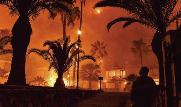 希臘雅典大火燒毀逾半森林