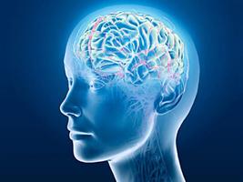 科學家驚奇發現 無數空氣污染顆粒入侵人腦