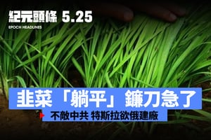 【5.25 紀元頭條】韭菜「躺平」  鐮刀急了