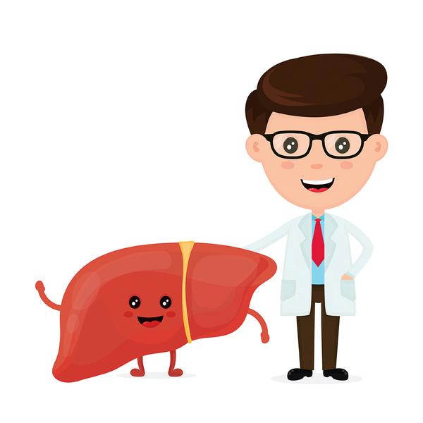 如何有效增強肝功能、預防肝癌上身?