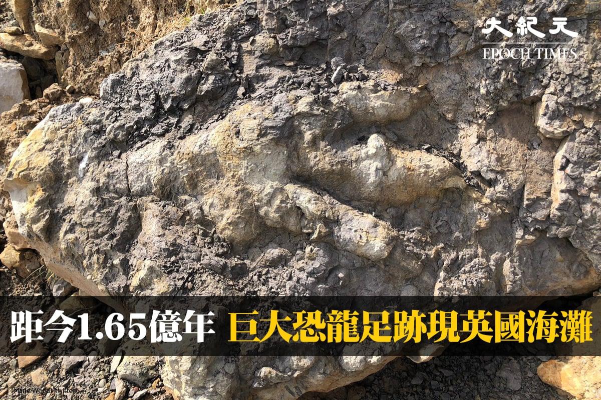 英國一位考古學家近期在約克郡海灘意外發現了一個據信有1.65億年歷史的恐龍腳印化石。(Marie Woods twitter)
