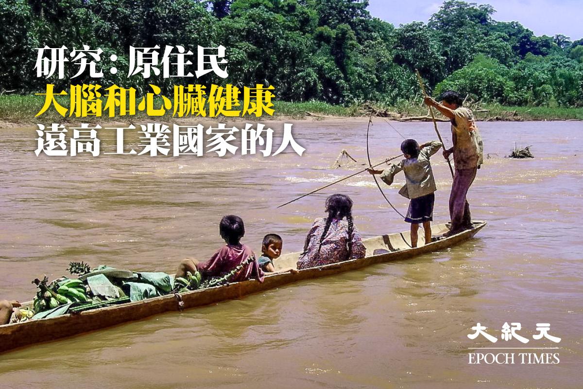 蒂瑪尼土著人隨著年齡的增長,其腦萎縮程度比工業化國家的人要輕。圖為蒂瑪尼土著人在河裏打魚。(Photo RNW.org/flickr)