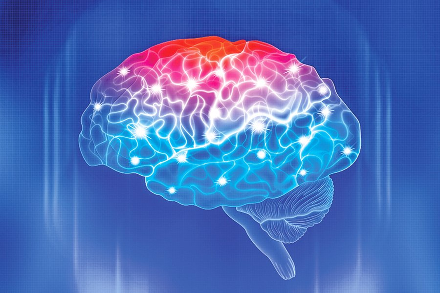 科學家:認知力時鐘 準確衡量大腦健康水平