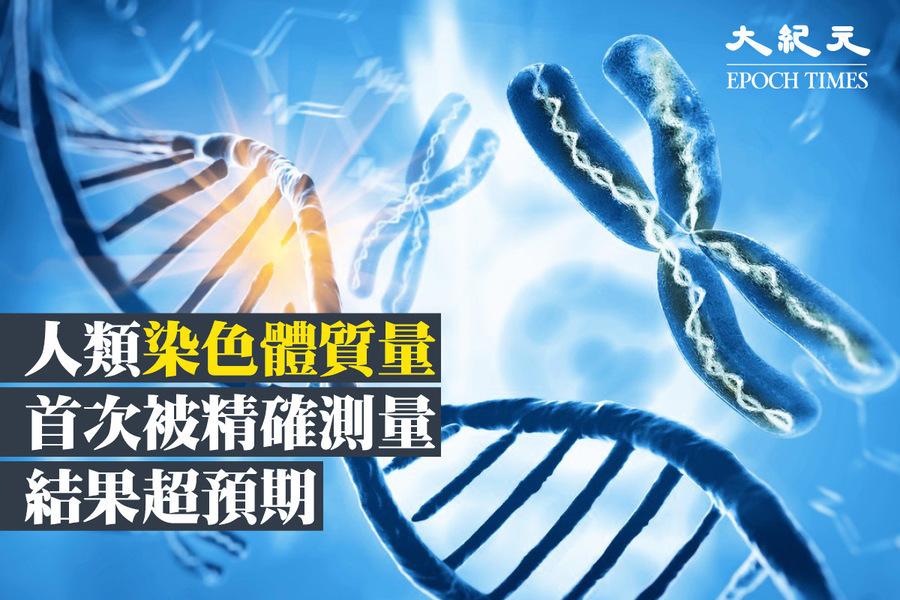 人類染色體質量首次被精確測量 結果超預期