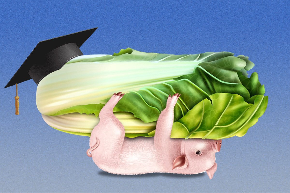 衡水高中生「土豬拱白菜」演講成名,是勵志還是可怕?爲何自喻鄉下土豬,誰造成了城鄉差別?衡水教育成榜樣?教育產業化促成「內卷」?(大紀元製圖)