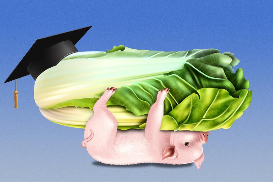 土豬拱白菜勵志還是可怕?