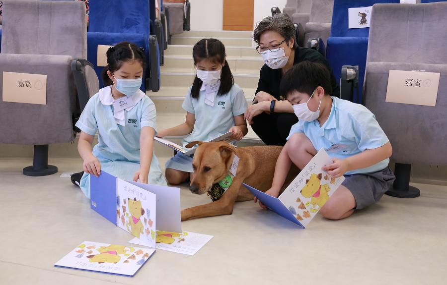 港大一項初步研究發現,伴讀犬有助提升學童的認知能力和同理心,並有效改善他們的過度活躍行為。(港大提供)