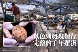以色列發現保存完整千年雞蛋 震驚考古學家