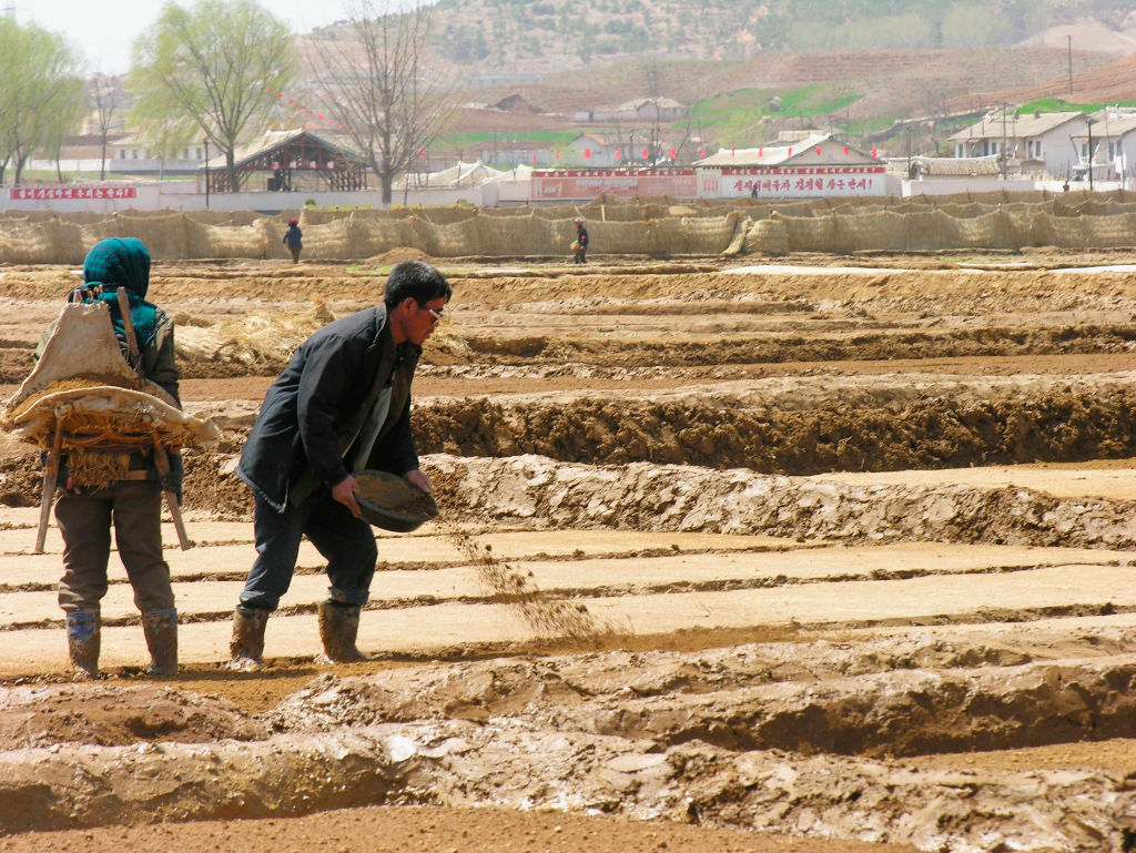 金正恩在6月18日結束為期四天的北韓勞動黨八屆三中全會上,罕見公開承認了北韓糧食短缺,並提及與美對話。圖為北韓人在為插秧做準備。( Gerald Bourke/WFP via Getty Images)