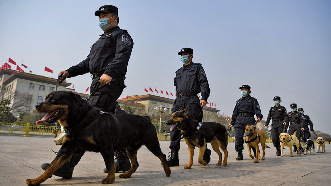 6月16日,有北京市民在微信發帖稱,在朝陽區草房附近的馬路邊,經常見到警察牽著警犬巡邏。圖為2020年3月8日北京舉行的全國人大會議之前,警察牽著警犬在北京大會堂外巡邏。(NOEL CELIS/AFP via Getty Images)