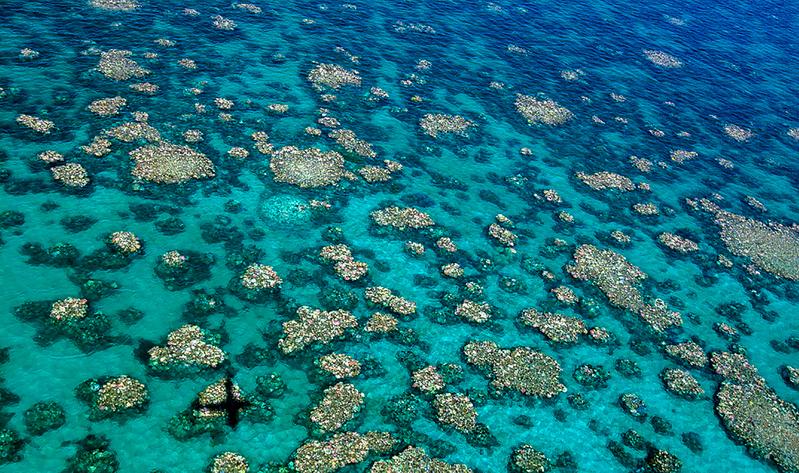 圖為大堡礁遠景。(AFP)