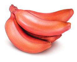 營養勝香蕉! 推薦吃紅皮蕉的五個理由