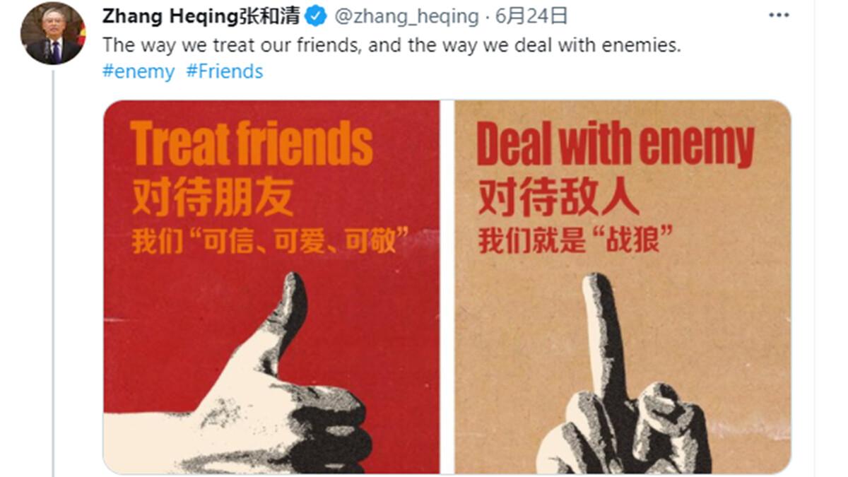 中共駐巴基斯坦外交官張和清23日發推文宣稱,「我們就是『戰狼』」,引發國際關注。(推特截圖)