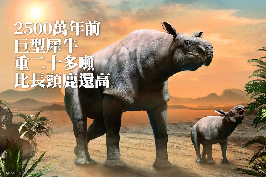 2500萬年前巨型犀牛 重二十多噸比長頸鹿還高