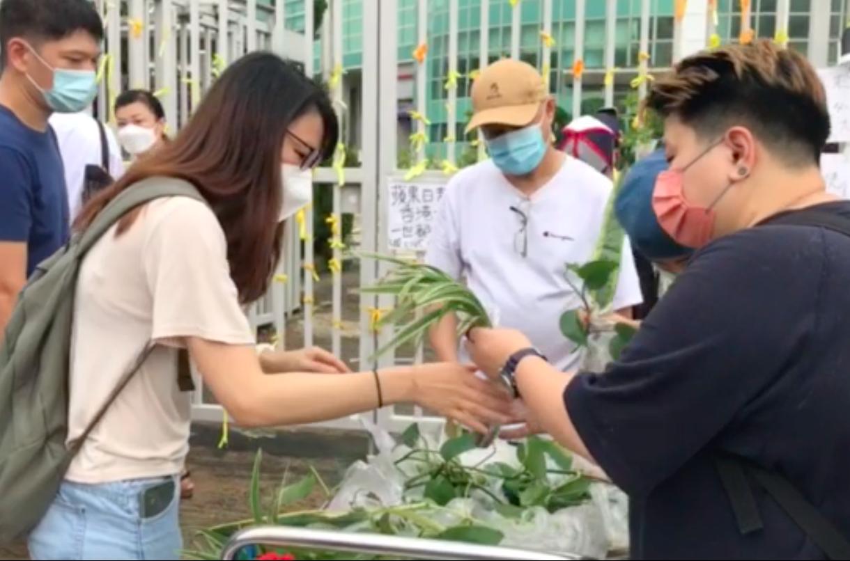 6月27日,市民前往《蘋果日報》大樓領養植物。(影片截圖)