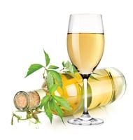 葡萄牙產酒區 Vinho Verde