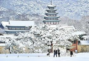 韓濟州機場關閉3天 昨重新開放