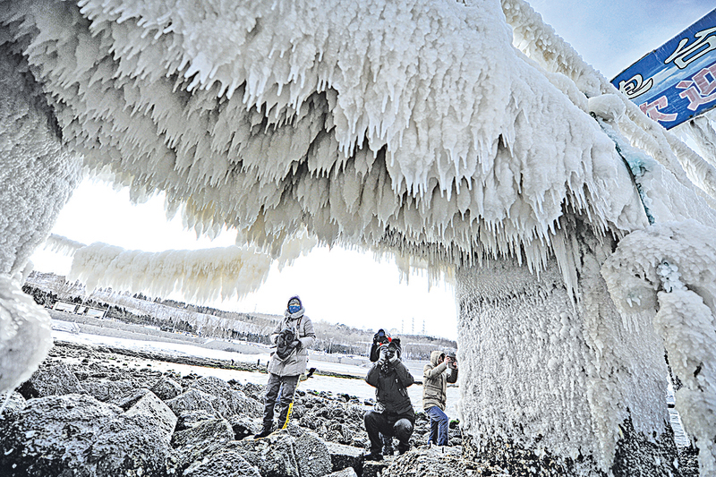 圖片新聞  寒潮持續  煙台現「冰河世紀」景觀