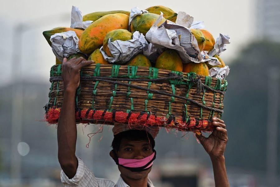 印度批發價格6月年漲12% 木瓜比一年前貴近一倍