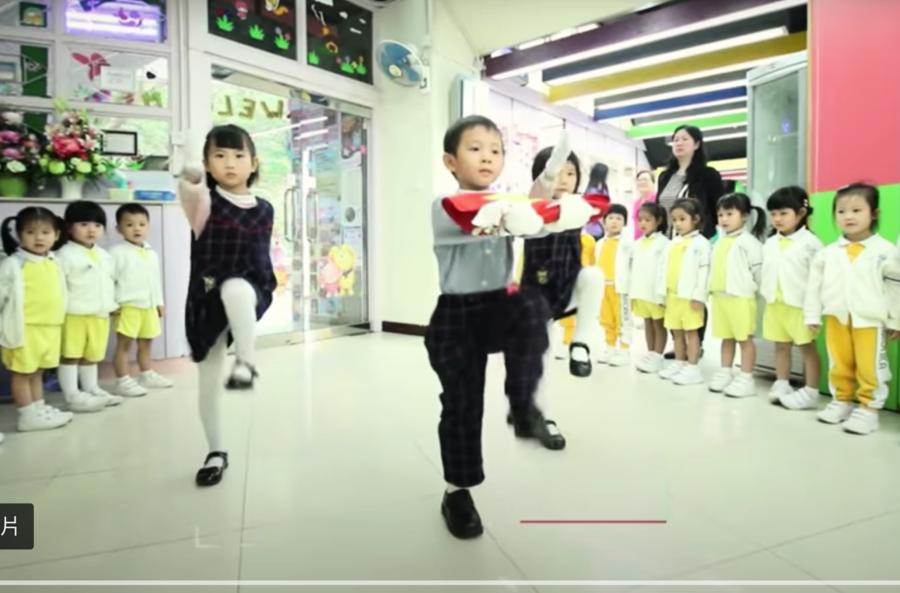 港幼稚園宣傳片引人憂 蔡霞擔心民族降智