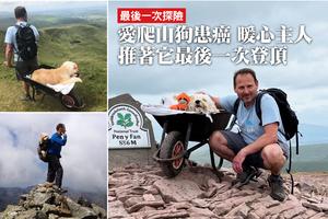愛爬山狗患癌 暖心主人推著它最後一次登頂