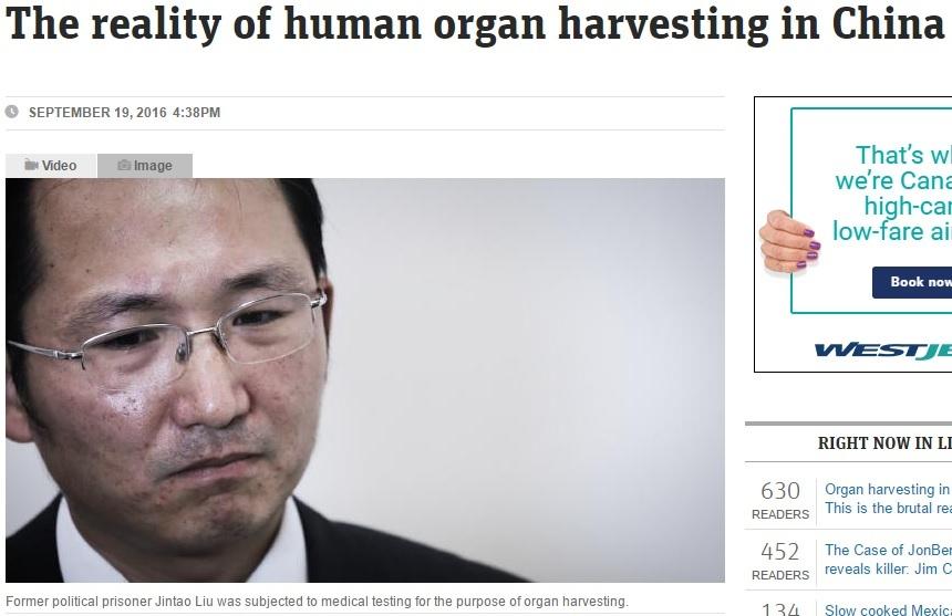 澳洲新聞網:中共盜取人體器官的現實