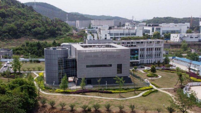武毒所官員爆疫前發表論文:P4實驗室處於危險中
