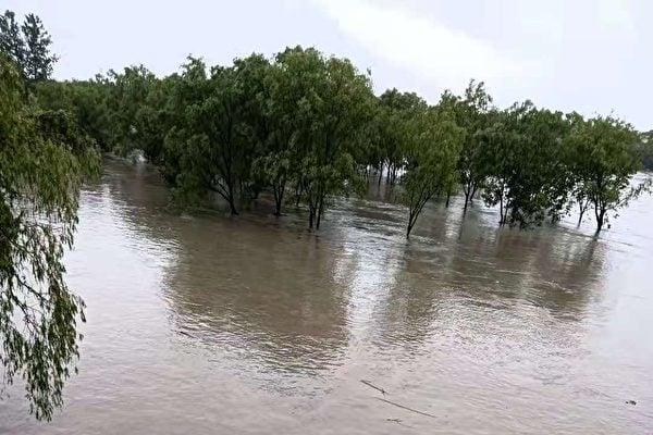 浙江紹興的公園被淹水。(受訪者提供)